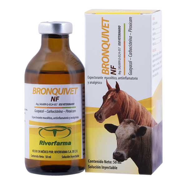 Bronquivet NF